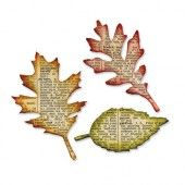 1 PK (1 ST)  Bigz die Tattered Leaves 656927 Tim Holtz*