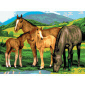 Painting by numbers HORSES AND FOALS