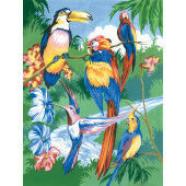 Painting by numbers TROPICAL BIRDS