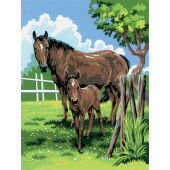 Painting by numbers MARE & FOAL