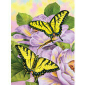 PaiPainting by numbers SWALLOWTAIL BUTTERFLY