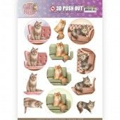 3D Pushout - Amy Design - Cats World - Show Cats